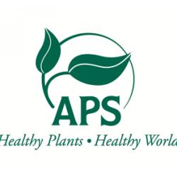 Read more at: Dr Nik Cunniffe receives APS Syngenta Award