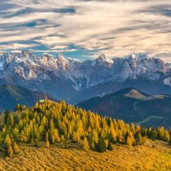 Read more at: Research shows rise of mountains is main driver in creation of new species