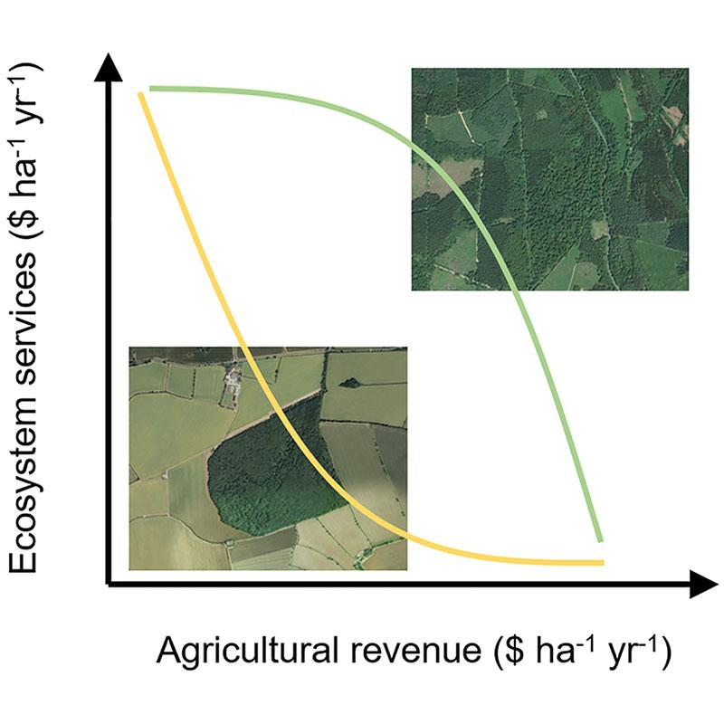 Trade-offs between farming and nature