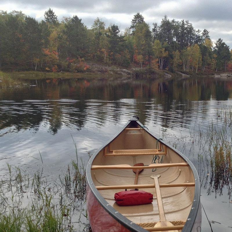 Plants can make lakes gassy