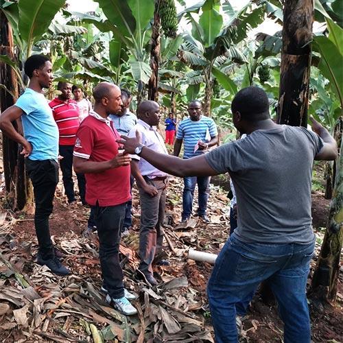 Farmer training outreach in Uganda